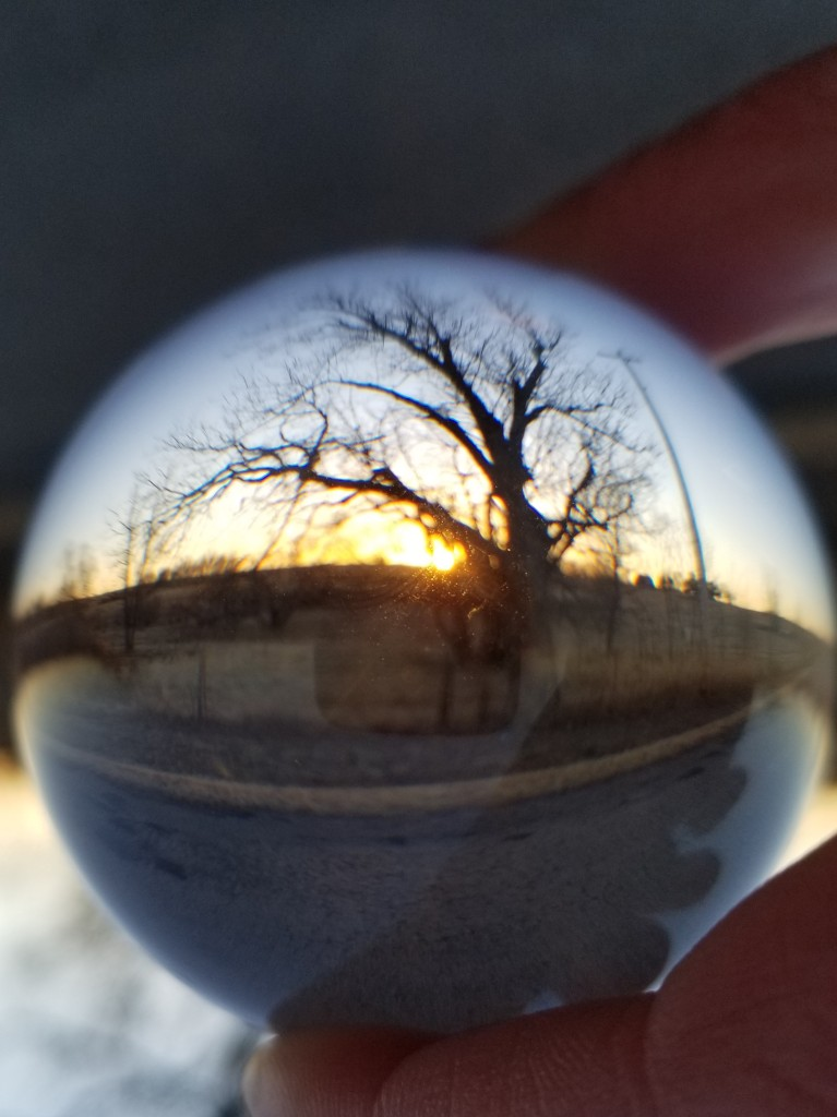 Winter tree through a glass ball